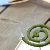 夏の害虫、駆除&予防